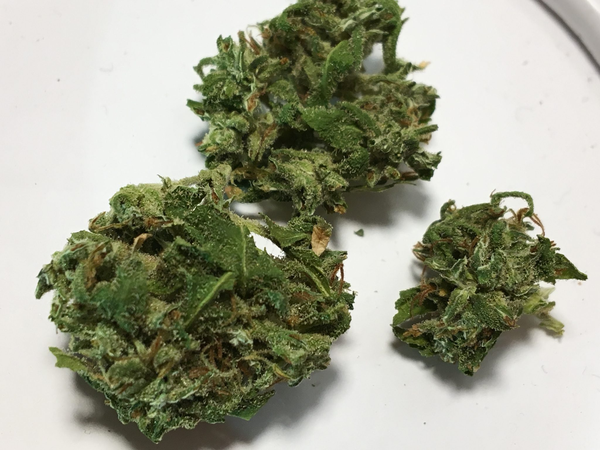 Upclose shot of cannabis from the Trois et Demi review