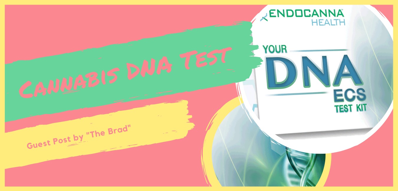 cannabis dna test feature image